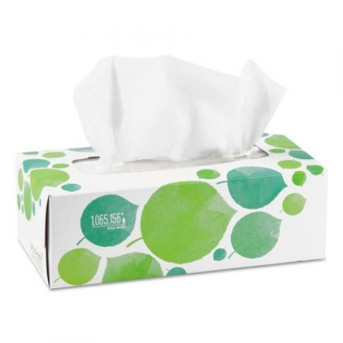 Seventh Generation 100% Recycled Facial Tissue, 2-Ply, 175/Box